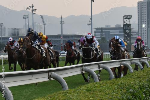 Fotografiet Hong Kong horse racing - Shatin Racecourse Race 9 - 12 October, 2019