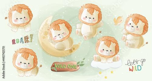 Little Safari Lion Collections