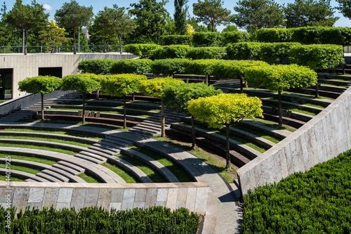 Fotografering Formed oaks on terraced amphitheater in public landscape city park Krasnodar or Galician Park