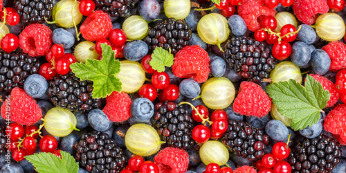 Berries fruits berry fruit strawberries strawberry blueberries blueberry panorama background