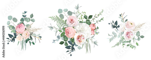 Fotografiet Blush pink garden roses, ranunculus, hydrangea flowers vector design bouquets