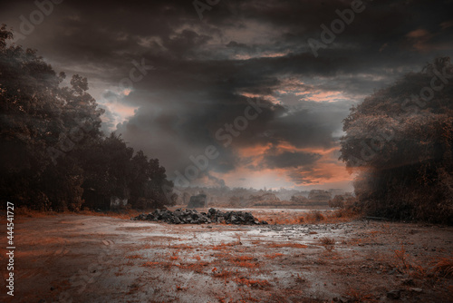 Canvas Print Nature photography Rainy day - Monochrome landscape