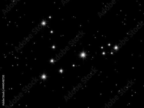 Canvastavla Fish constellation Pisces constellation  It's a rare constellation