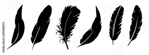 Fotografiet feather vector collection