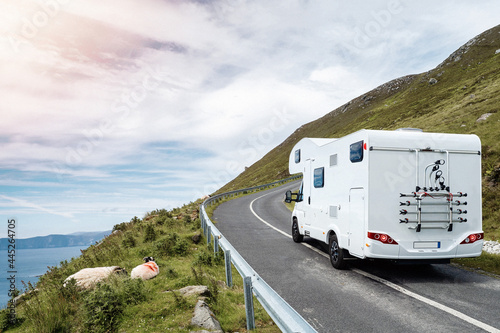 Fotografering Motor home moving on a small narrow road in a mountains, sheep on a side of a road, Beautiful cloudy sky, sun flare