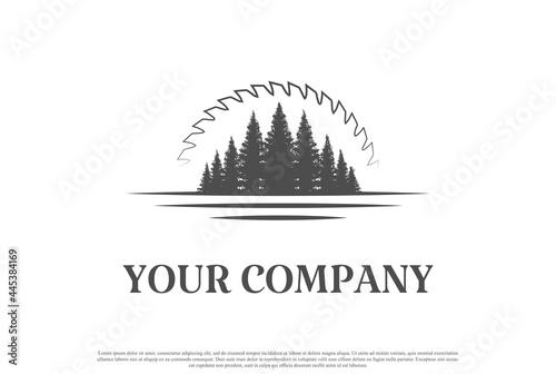 Pine Cedar Conifer Evergreen Larch Cypress Spruce Fir Tree Forest with Sunset Su Fototapet