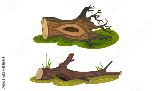 Obraz na plátně Cut Log or Snag with Dry Branches as Coarse Woody Debris Vector Set