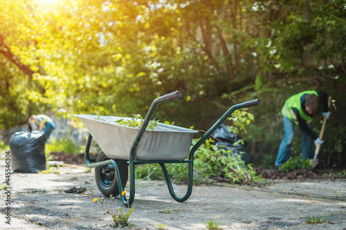 garden wheelbarrow with leaves or cleaning city park in spring at sunny day Poster Mural XXL