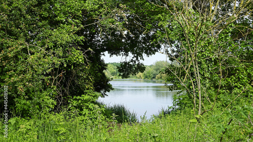 Canvas Natural view of trees and a calm lake in the University of East Anglia in Norwic