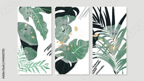 Fotografia Tropical botanical triptych wall art vector
