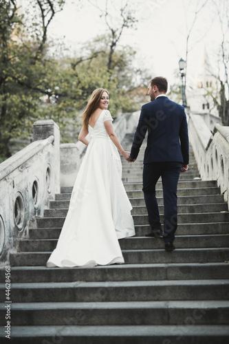 Fototapeta Wedding couple bride and groom holding hands