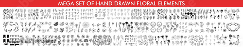 Set of floral branch. Flower rose, leaves. Wedding concept. Collection of hand drawn vintage design elements. Collection of hand drawn doodle design elements isolated on white background.  #447091117
