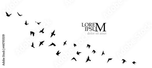 Fotografiet A flock of flying birds. Vector illustration