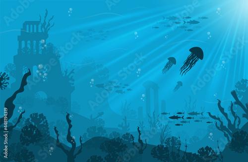 Fotografie, Obraz Underwater background with various sea views