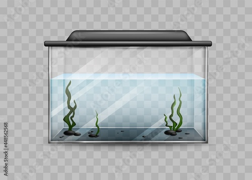 Leinwand Poster Transparent aquarium with water and algae isolated template