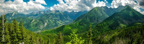 Gęsia Szyja - szlak z Rusinowej Polany, Tatry