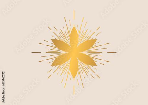 Fotografering Seed of life symbol Sacred Geometry