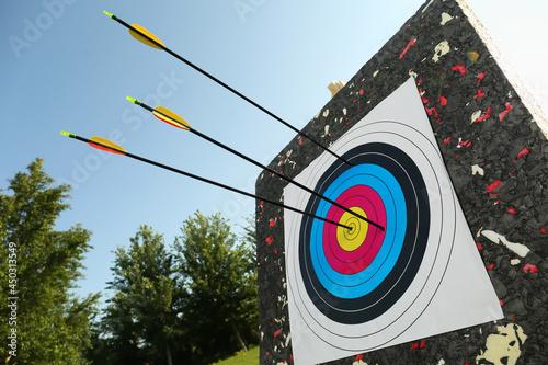 Fotografija Arrows in archery target outdoors, closeup view