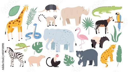 Fototapeta premium Flat wild safari animals from rainforest and savanna. Jungle forest birds, monkey and snake. African zebra, crocodile and jaguar vector set