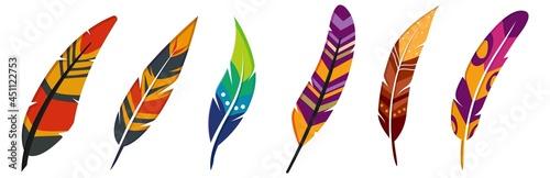 Fotografia Colorful Vector Feather