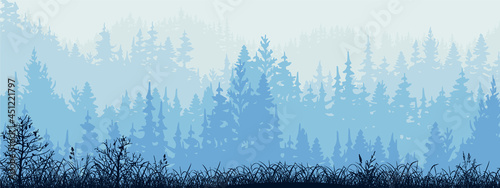 Fotografie, Obraz Horizontal banner of forest and meadow, silhouettes of trees and grass
