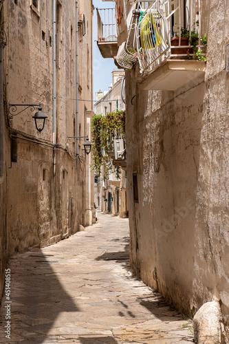 malownicza uliczka z balkonami pełnymi kwiatów. Słoneczny letni dzień. Monopoli, Puglia, Włochy