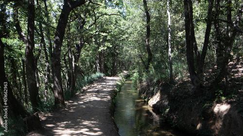 Fotografia Bohère irrigation canal, canal de Bohère descendant du Canigou pour irriguer