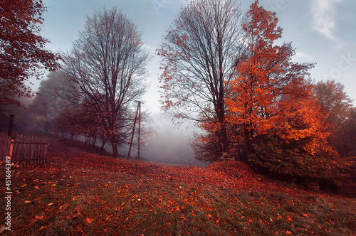 Jesienny pejzaż