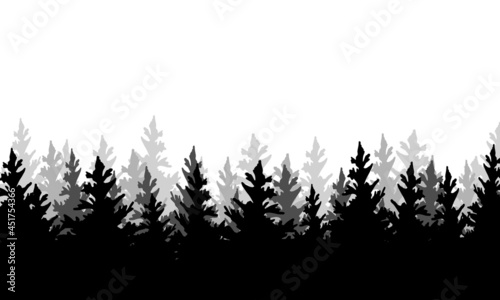 Obraz na plátně Silhouette of fir forest hand drawing on white background