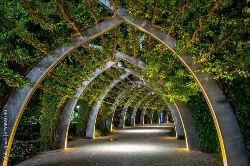 Fotografiet Brisbane Arbour walk located in the picturesque Southbank parklands