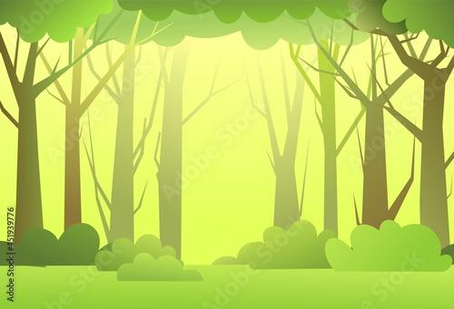 Fotografie, Obraz Forest landscape