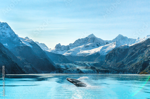 Fotografering Alaska cruise travel Glacier Bay vacation