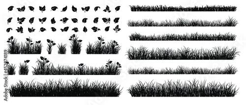 Fotografia Set of Grass Isolated on White Background.