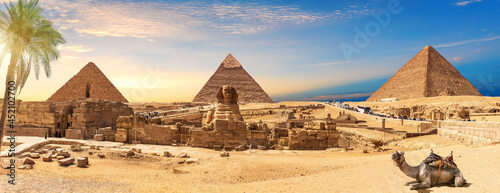 Fotografie, Obraz Egypt Pyramids and Sphinx panorama behind the palm with a camel lying by, Cairo,