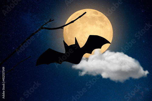 Wallpaper Mural halloween spooky dark background with bats and full moon