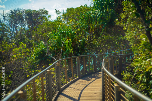 Fototapeta オーストラリアのゴールドコースト、バイロン・ベイ周辺の観光名所を旅行している風景 Scenes from a trip around Byron Bay, Gold Coast, Australia