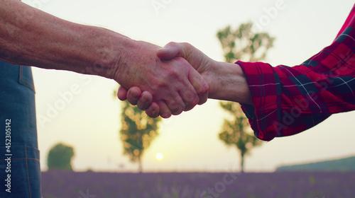 Fotografia Hands shake between senior grandfather grandmother farmers in blooming field of lavender flowers