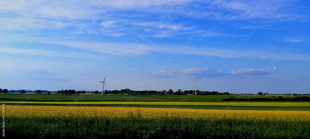 krajobraz wiejski ,rzepak