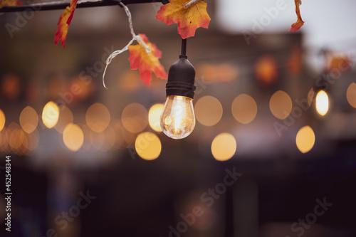 Billede på lærred Hanging Edison Light Autumn Leaves