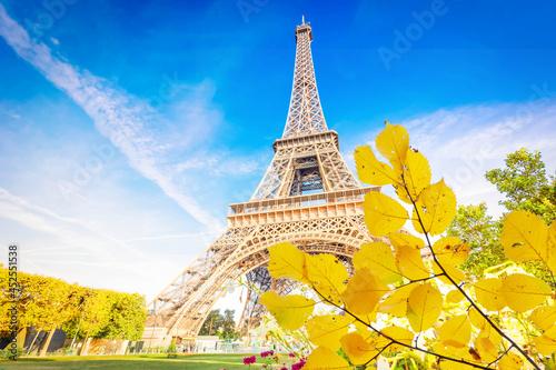 Canvas-taulu eiffel tour and Paris cityscape