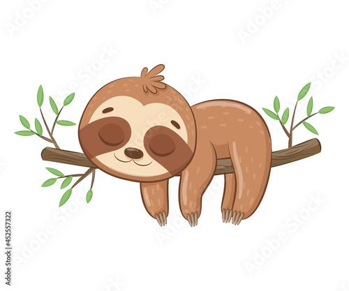 Fototapeta premium Cute sloth sleeps sweetly.Cartoon vector illustration.
