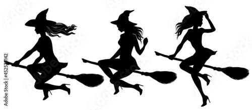 Canvas Print Tree silhouettes of young beautiful sexy witch flying on a broomstick