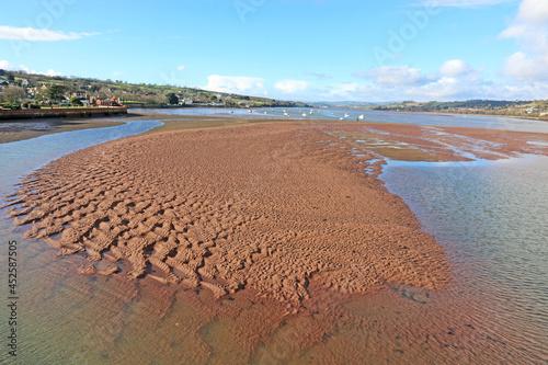Stampa su Tela River Teign at low tide