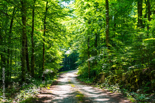 Parque Natural de Urbasa y Andia en Navarra, (País Vasco, España) Fototapet