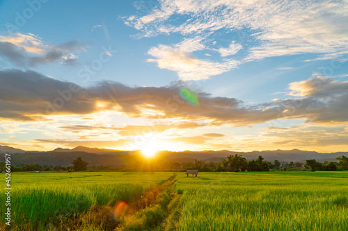 Canvastavla Green rice fields during sunset with clouds sky and flare light at Mae Hong Son province Thailand