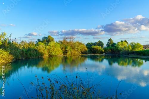 Obraz na plátně Landscape of a pond, wetland nature reserve of En Afek