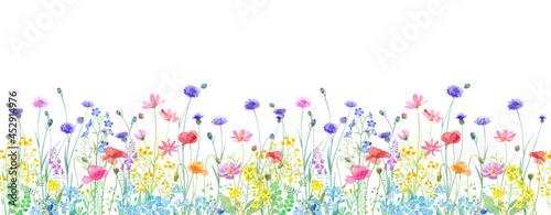 Fotografia 色々な花が咲き乱れる、春の野原の水彩イラスト。横方向シームレスパターン。パノラマ。