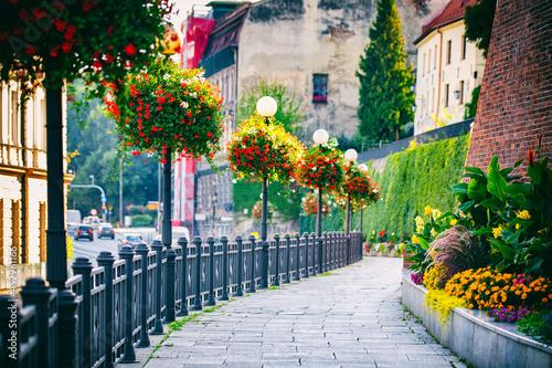 Deptak wśród kwiatów