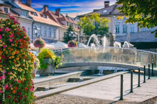 Ukwiecone miasto Bielsko-Biała