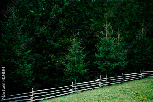 Canvas-taulu composite summer landscape, fence along the hillside meadows of the mountains